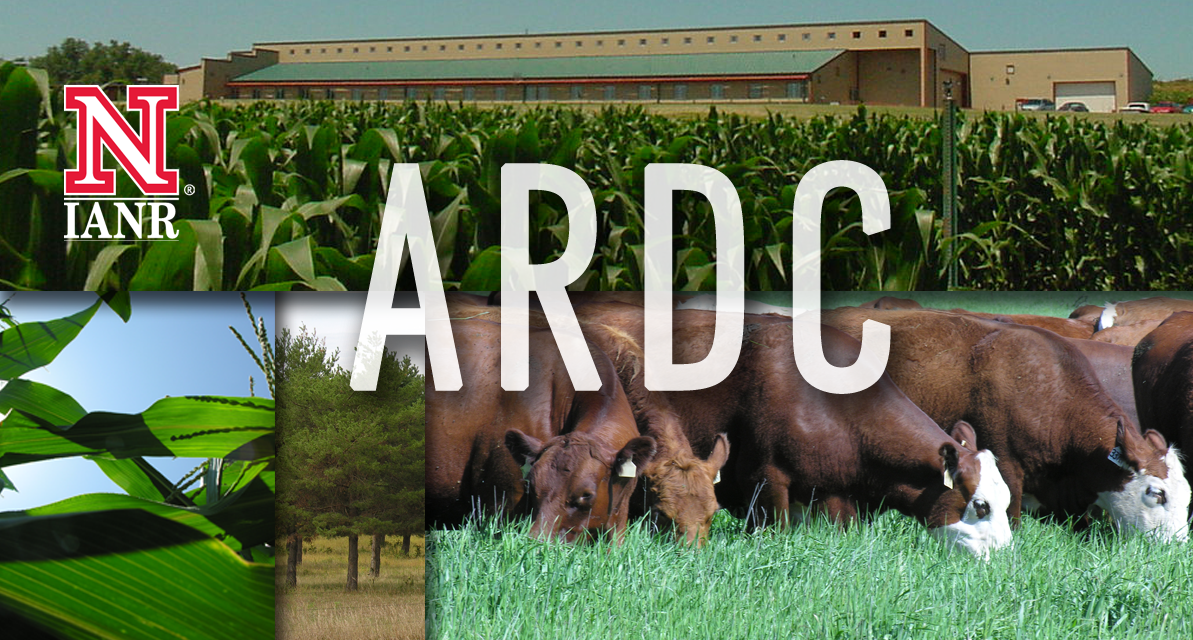 Welcome to the ARDC